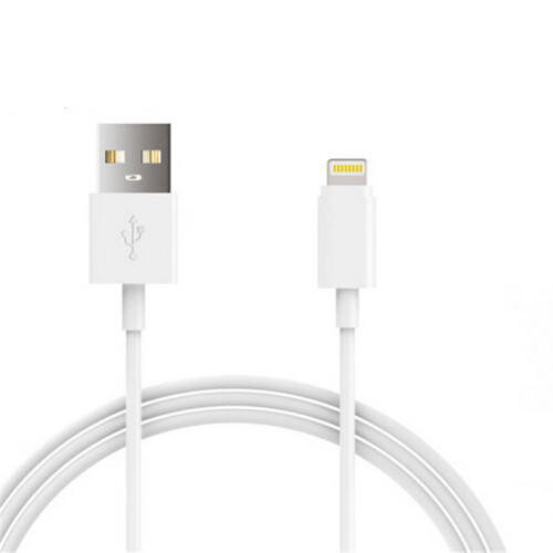 iPhone Cable & Chargers