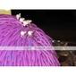Femei Fata cu Flori Aliaj Imitație de Perle Diadema-Nuntă Ocazie specială Informal Exterior Ac de Păr 6 Piese