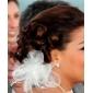tul superb cu pene / imitație perla nunta caciula de mireasa