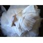 trompeta / Mermaid matura franțuzești oră / perie de tren satin rochie de mireasa
