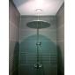 20-tums rostfritt stål duschmunstycke med färg lett till skiftande ljus