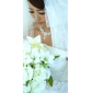Pentru femei Ștras costum de bijuterii Imitație de Perle Aliaj Coliere Σκουλαρίκια Pentru Nuntă Petrecere Zi de Naștere Logodnă Cadouri