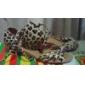Copiii cu design elegant și femei din imitație de piele pantofi de dans superior