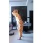 Kigurumi Pijamale Girafă Onesie Pijamale Costume Coral Fleece Portocaliu Cosplay Pentru Adulți Sleepwear Pentru Animale Desen animat