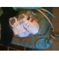 Vit-Platt klack-Pojkar-Första gåsko / Babysko-Syntetiskt-Fritid-Platta