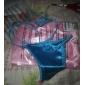 Women's Solid Color Belt Panties